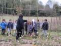jardin de pirouette5