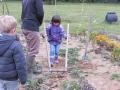 jardindepirouette034