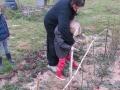 jardindepirouette035