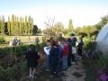 jardin 035