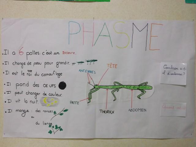 D Co Petit Jardin Septembre Poitiers 32 Code Postale Poitiers Centre Bande Annonce